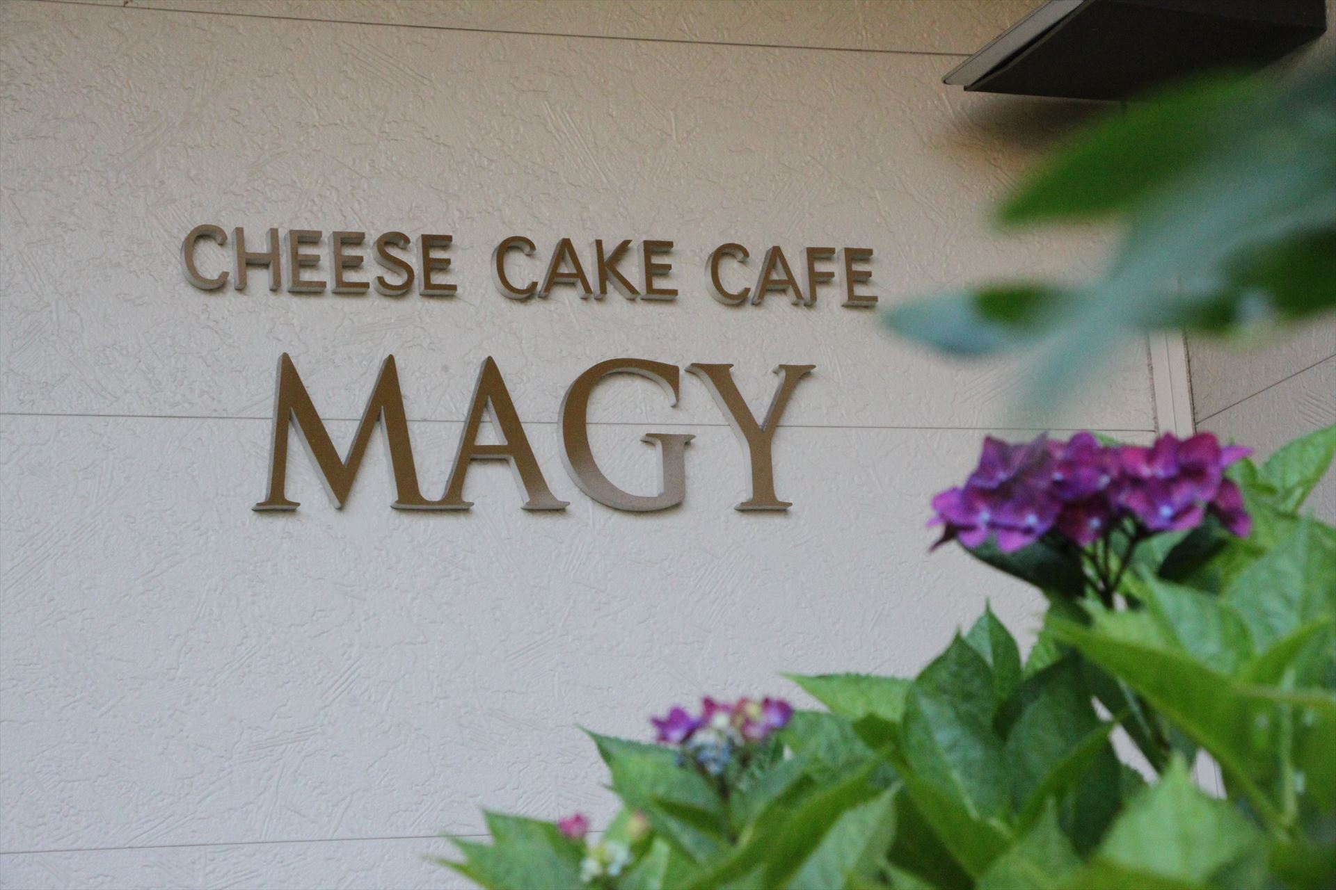 CHEESE CAKE CAFE MAGY